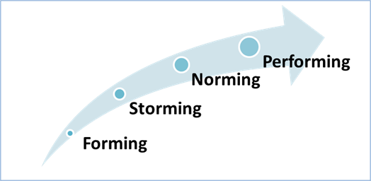 Figure 1: Six Sigma Project Team Stages